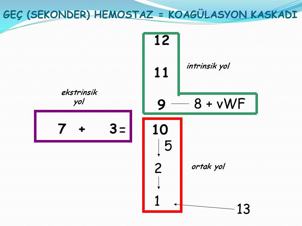 7 + 3 = 10 5 2 1 12 11 9 8 + vWF 13 ekstrinsik yol intrinsik yol ortak yol