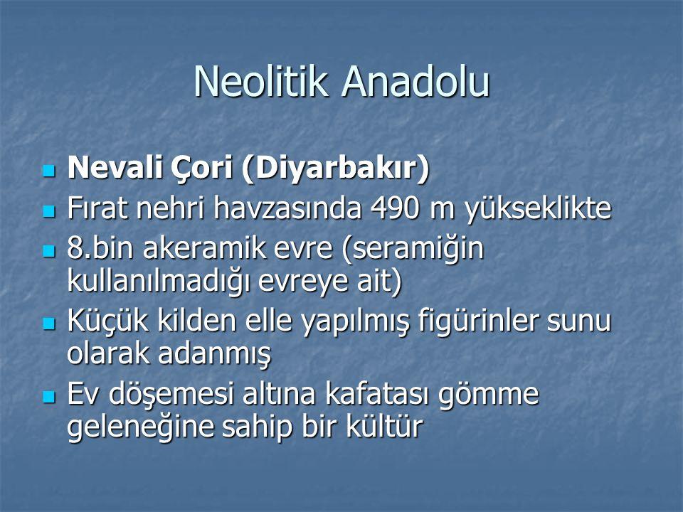 Neolitik Anadolu Nevali Çori (Diyarbakır) Nevali Çori (Diyarbakır) Fırat nehri havzasında 490 m yükseklikte Fırat nehri havzasında 490 m yükseklikte 8