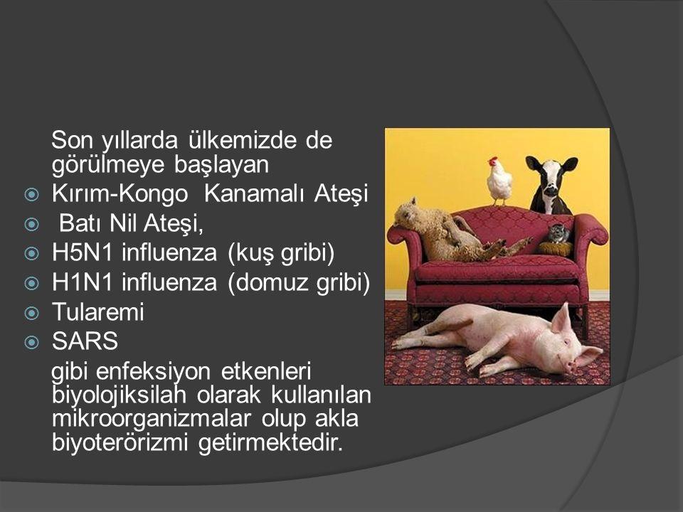 Son yıllarda ülkemizde de görülmeye başlayan  Kırım-Kongo Kanamalı Ateşi  Batı Nil Ateşi,  H5N1 influenza (kuş gribi)  H1N1 influenza (domuz gribi