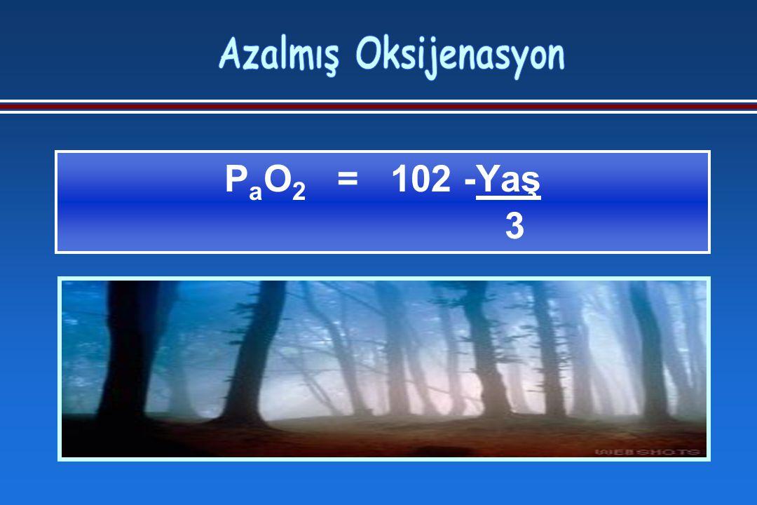 P a O 2 = 102 -Yaş 3