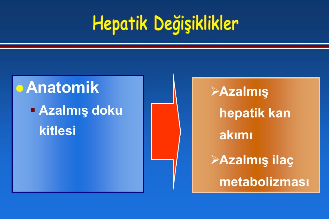  Azalmış hepatik kan akımı  Azalmış ilaç metabolizması l Anatomik  Azalmış doku kitlesi