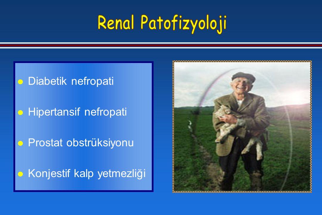 l Diabetik nefropati l Hipertansif nefropati l Prostat obstrüksiyonu l Konjestif kalp yetmezliği