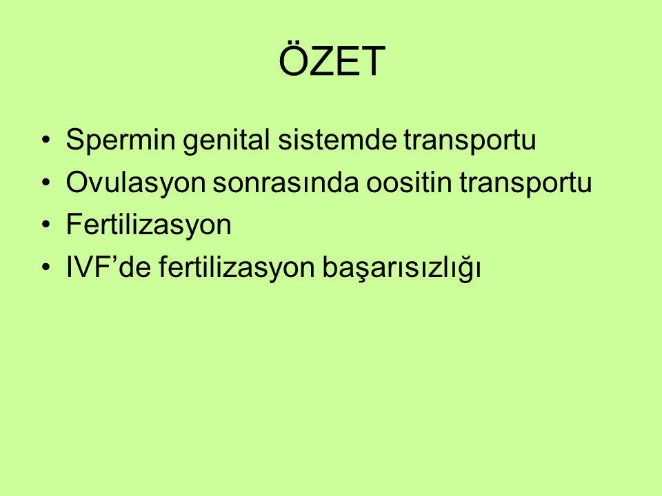 ÖZET Spermin genital sistemde transportu Ovulasyon sonrasında oositin transportu Fertilizasyon IVF'de fertilizasyon başarısızlığı