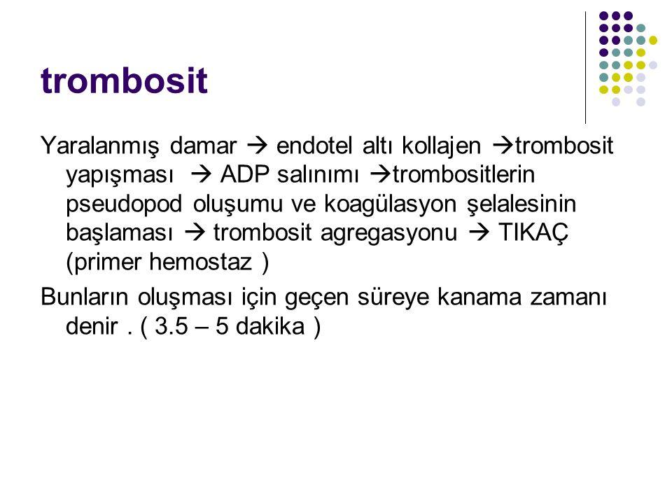 trombosit Yaralanmış damar  endotel altı kollajen  trombosit yapışması  ADP salınımı  trombositlerin pseudopod oluşumu ve koagülasyon şelalesinin başlaması  trombosit agregasyonu  TIKAÇ (primer hemostaz ) Bunların oluşması için geçen süreye kanama zamanı denir.