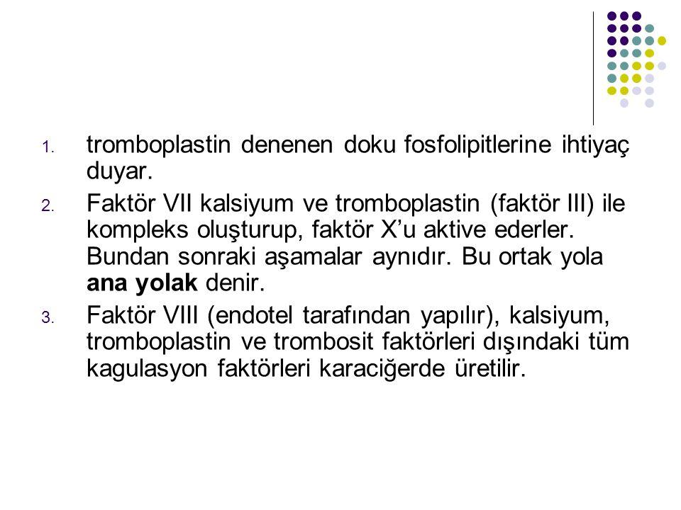 1.tromboplastin denenen doku fosfolipitlerine ihtiyaç duyar.