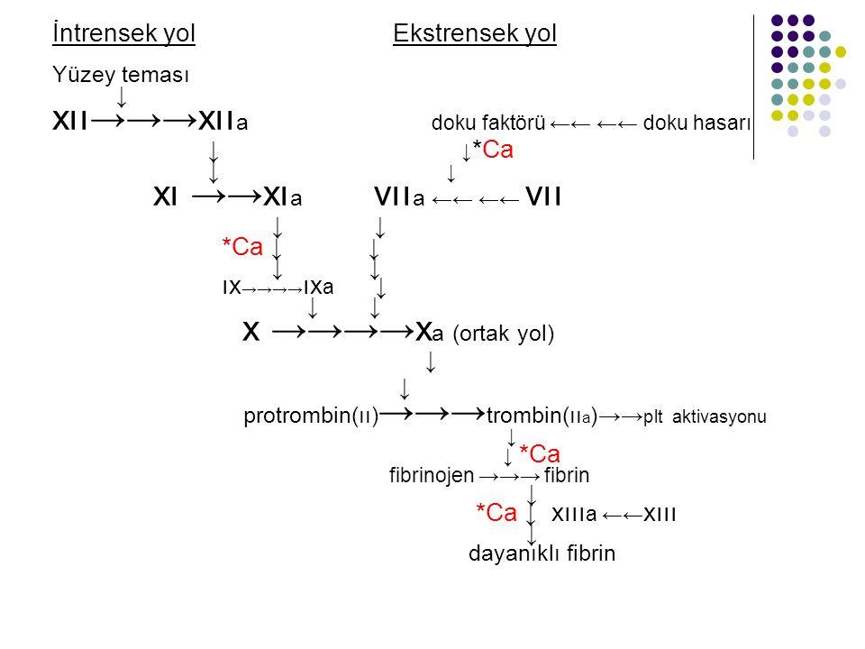 İntrensek yol Ekstrensek yol Yüzey teması ↓ xıı→→→xıı a doku faktörü ←← ←← doku hasarı ↓ ↓ *Ca ↓ xı →→xı a vıı a ←← ←← vıı ↓ *Ca ↓ ↓ ↓ ıx →→→→ ıx a ↓ ↓ x →→→→x a (ortak yol) ↓ protrombin(ıı) →→→ trombin(ıı a )→→ plt aktivasyonu ↓ ↓ *Ca fibrinojen →→→ fibrin ↓ *Ca ↓ xııı a ←← xııı ↓ dayanıklı fibrin