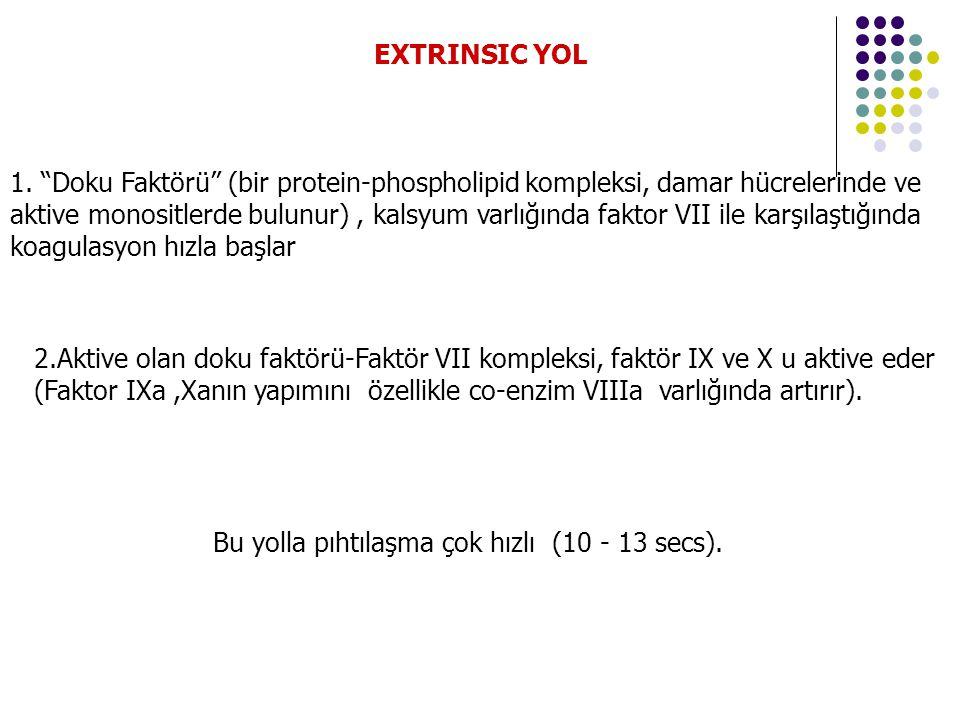 EXTRINSIC YOL 1.