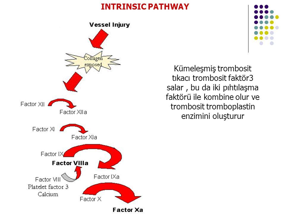 Kümeleşmiş trombosit tıkacı trombosit faktör3 salar, bu da iki pıhtılaşma faktörü ile kombine olur ve trombosit tromboplastin enzimini oluşturur INTRINSIC PATHWAY