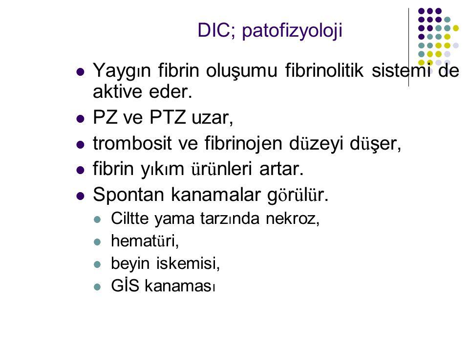Yayg ı n fibrin oluşumu fibrinolitik sistemi de aktive eder.