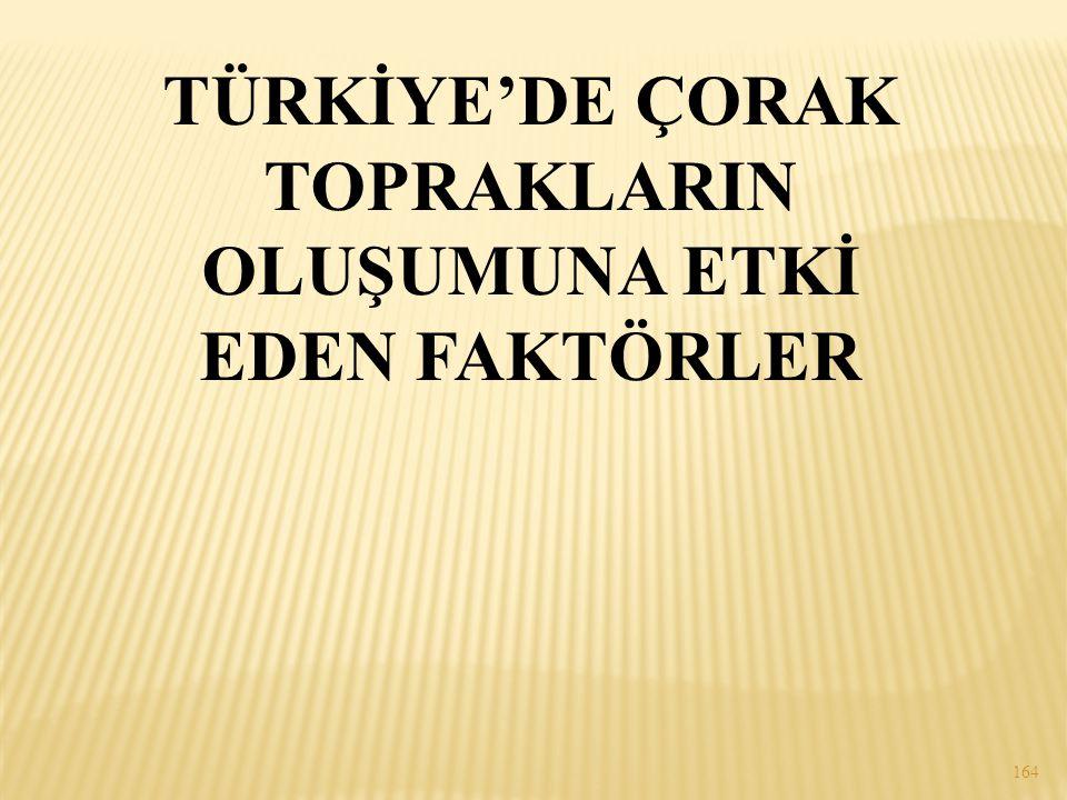 TÜRKİYE'DE ÇORAK TOPRAKLARIN OLUŞUMUNA ETKİ EDEN FAKTÖRLER 164
