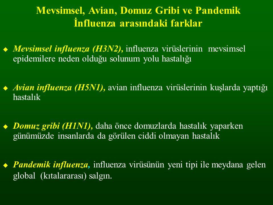 Mevsimsel, Avian, Domuz Gribi ve Pandemik İnfluenza arasındaki farklar  Mevsimsel influenza (H3N2), influenza virüslerinin mevsimsel epidemilere nede