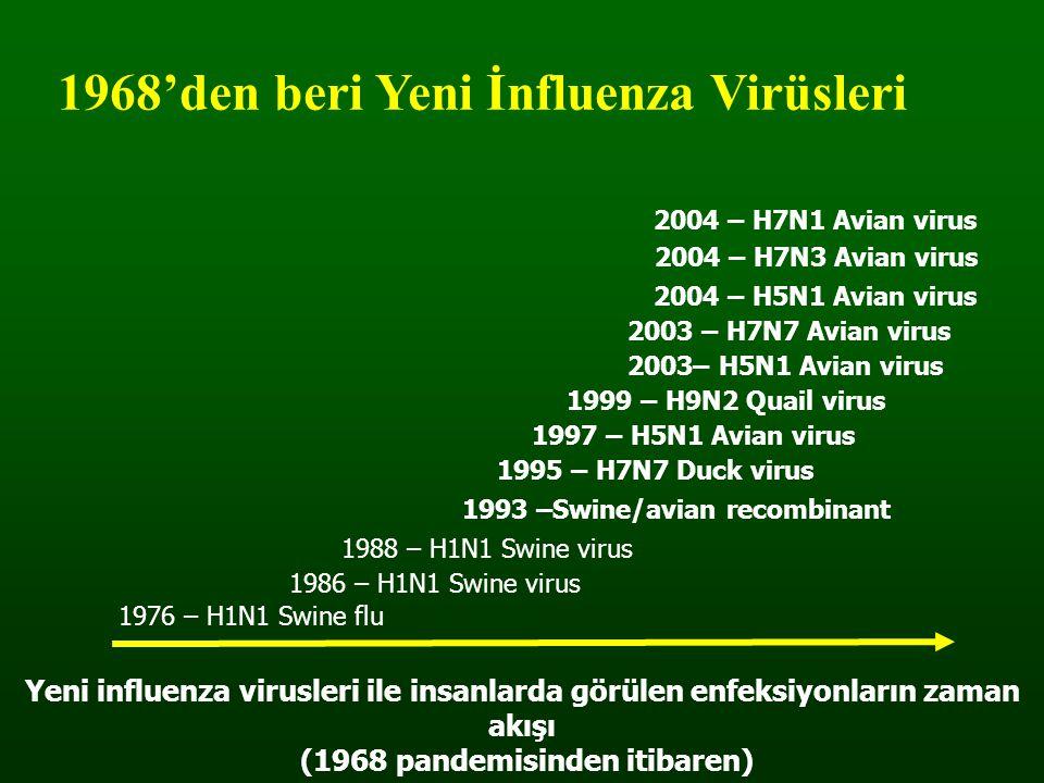 1968'den beri Yeni İnfluenza Virüsleri 1976 – H1N1 Swine flu 1986 – H1N1 Swine virus 1988 – H1N1 Swine virus 1993 –Swine/avian recombinant 1995 – H7N7