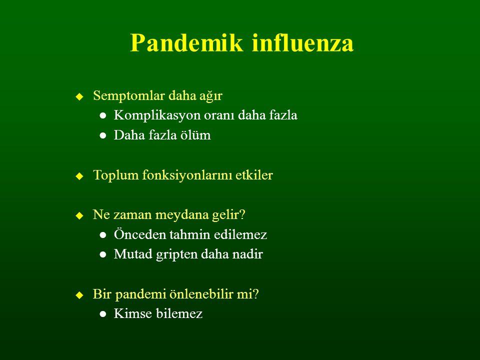 Pandemik influenza  Semptomlar daha ağır Komplikasyon oranı daha fazla Daha fazla ölüm  Toplum fonksiyonlarını etkiler  Ne zaman meydana gelir? Önc