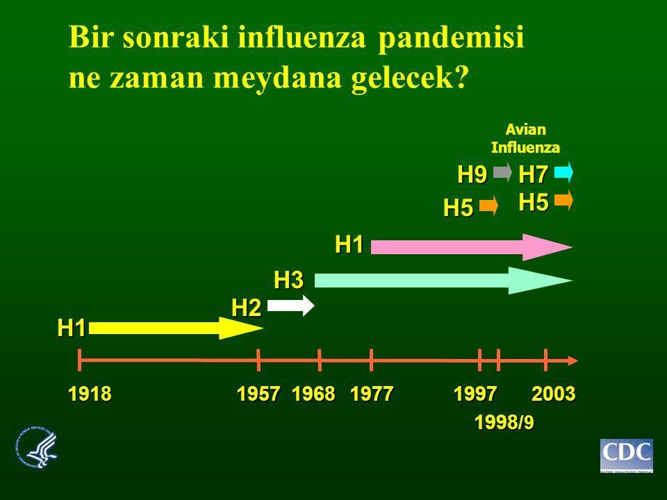 Bir sonraki influenza pandemisi ne zaman meydana gelecek? 19181957196819771997 1998 /9 2003 H1 H1 H3 H2 H7 H5 H5 H9 Avian Influenza