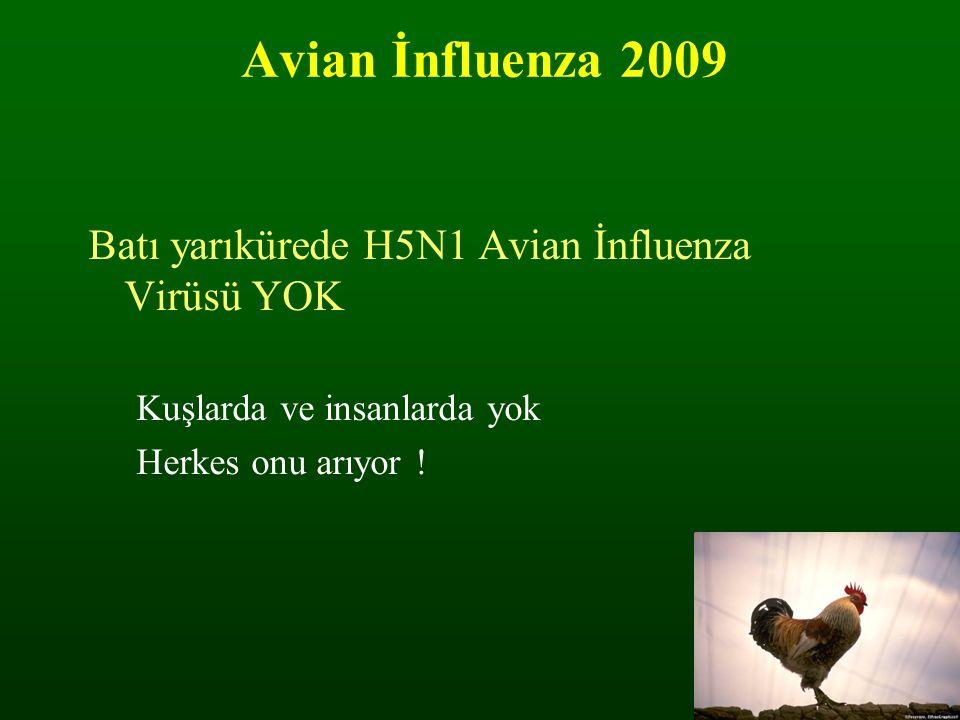 Avian İnfluenza 2009 Batı yarıkürede H5N1 Avian İnfluenza Virüsü YOK Kuşlarda ve insanlarda yok Herkes onu arıyor !