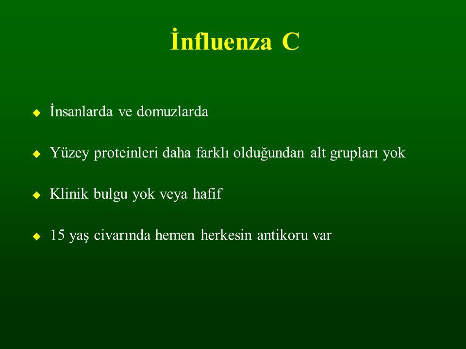 H5N1 Avian influenza hala tehdit ediyor mu .