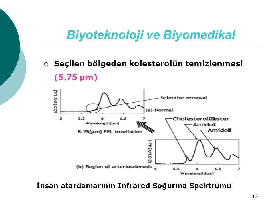 12 Biyoteknoloji ve Biyomedikal  Seçilen bölgeden kolesterolün temizlenmesi (5.75 µm) İnsan atardamarının Infrared Soğurma Spektrumu