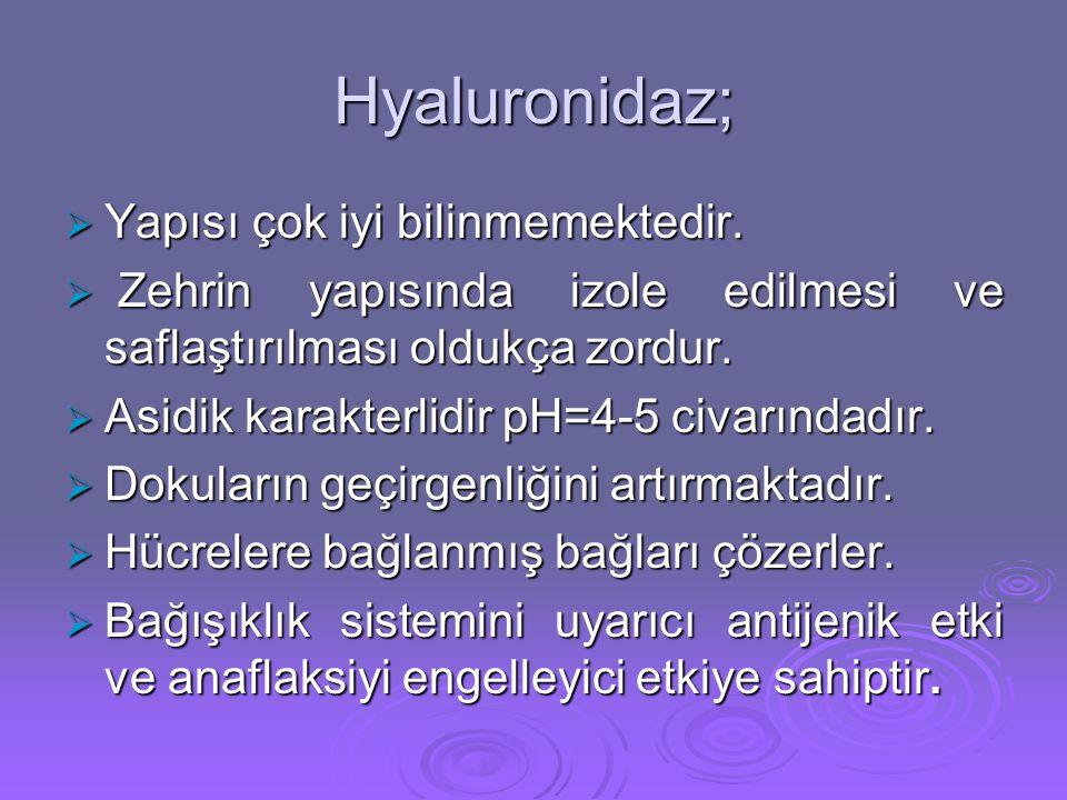 Hyaluronidaz;  Yapısı çok iyi bilinmemektedir.  Zehrin yapısında izole edilmesi ve saflaştırılması oldukça zordur.  Asidik karakterlidir pH=4-5 civ