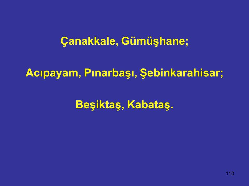 110 Çanakkale, Gümüşhane; Acıpayam, Pınarbaşı, Şebinkarahisar; Beşiktaş, Kabataş.
