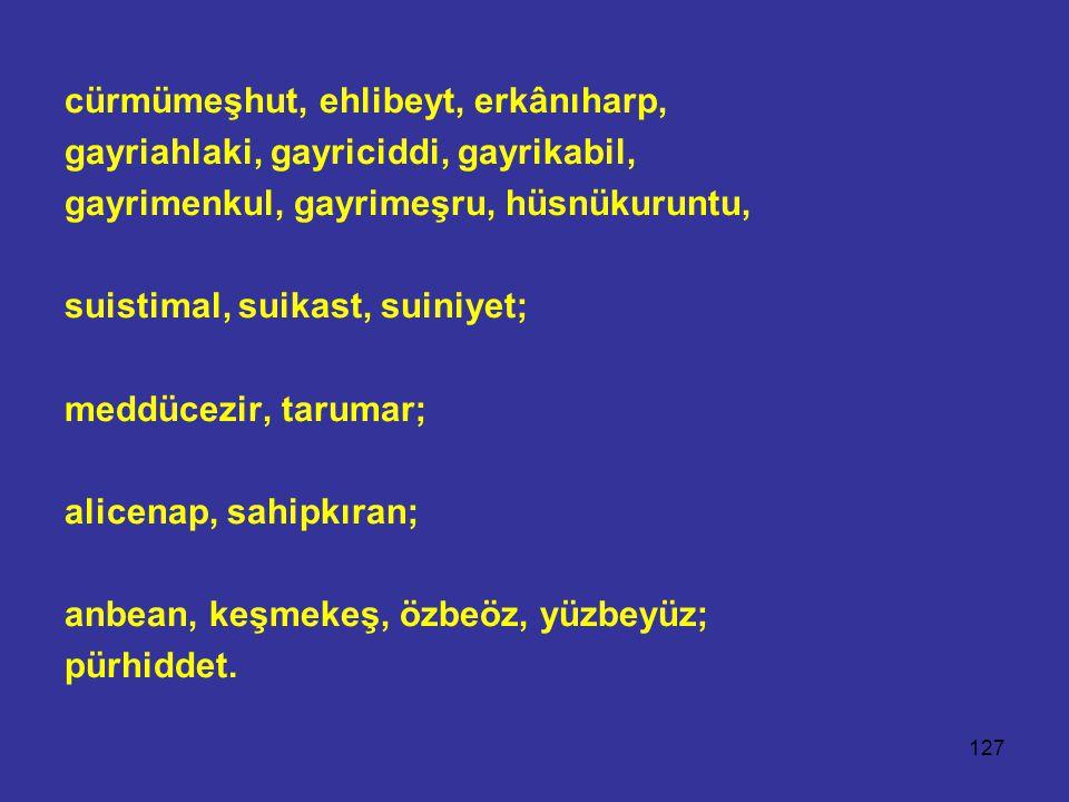 127 cürmümeşhut, ehlibeyt, erkânıharp, gayriahlaki, gayriciddi, gayrikabil, gayrimenkul, gayrimeşru, hüsnükuruntu, suistimal, suikast, suiniyet; meddücezir, tarumar; alicenap, sahipkıran; anbean, keşmekeş, özbeöz, yüzbeyüz; pürhiddet.