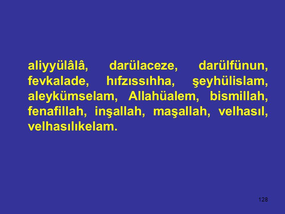 128 aliyyülâlâ, darülaceze, darülfünun, fevkalade, hıfzıssıhha, şeyhülislam, aleykümselam, Allahüalem, bismillah, fenafillah, inşallah, maşallah, velhasıl, velhasılıkelam.