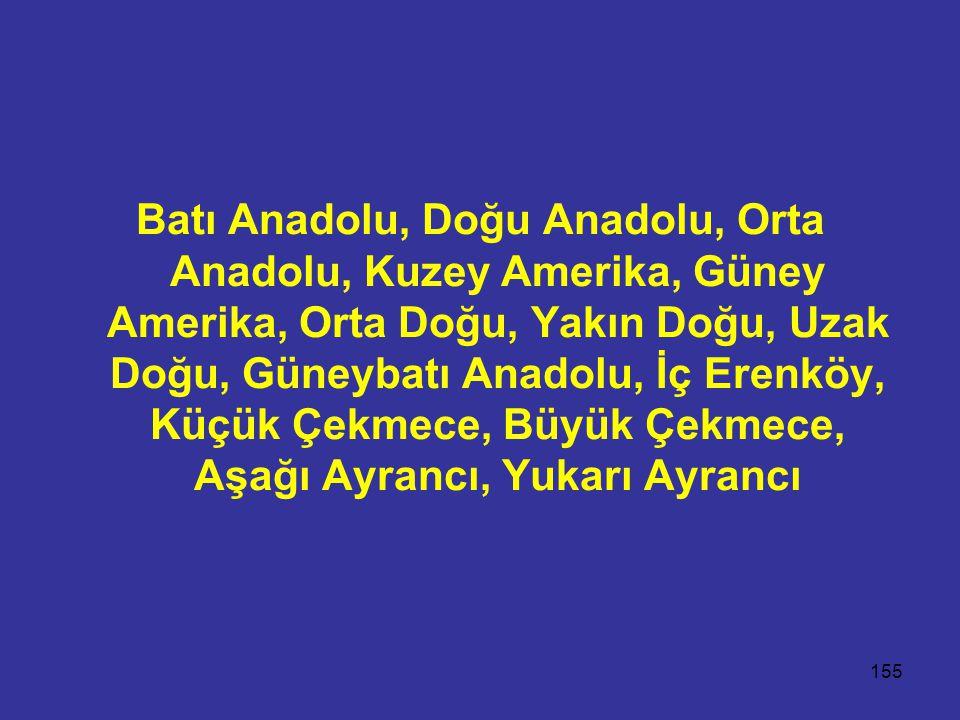 155 Batı Anadolu, Doğu Anadolu, Orta Anadolu, Kuzey Amerika, Güney Amerika, Orta Doğu, Yakın Doğu, Uzak Doğu, Güneybatı Anadolu, İç Erenköy, Küçük Çek
