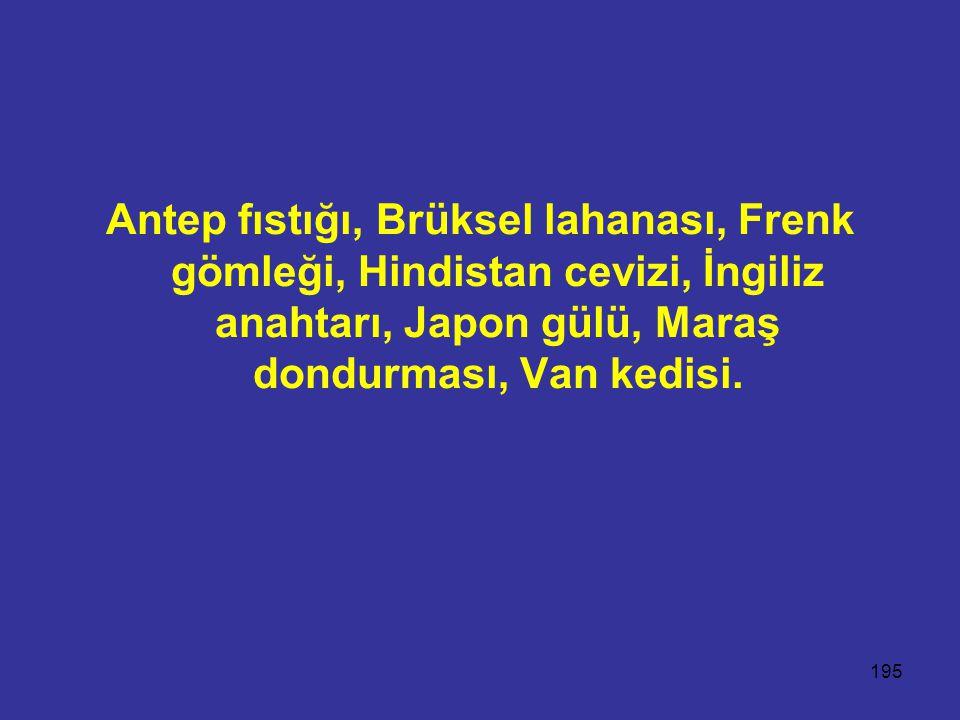 195 Antep fıstığı, Brüksel lahanası, Frenk gömleği, Hindistan cevizi, İngiliz anahtarı, Japon gülü, Maraş dondurması, Van kedisi.