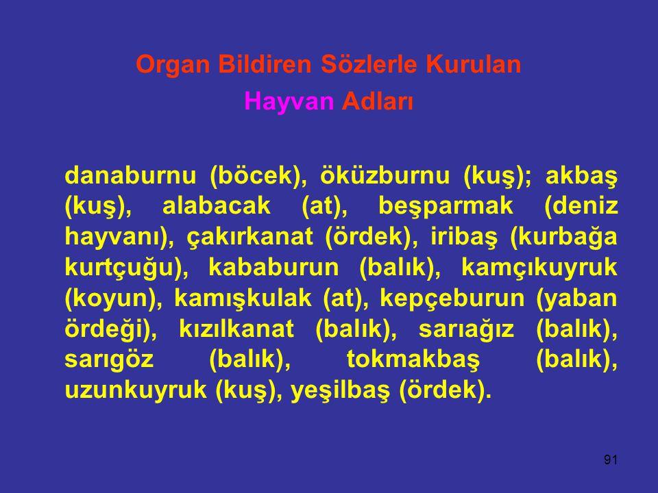 91 Organ Bildiren Sözlerle Kurulan Hayvan Adları danaburnu (böcek), öküzburnu (kuş); akbaş (kuş), alabacak (at), beşparmak (deniz hayvanı), çakırkanat