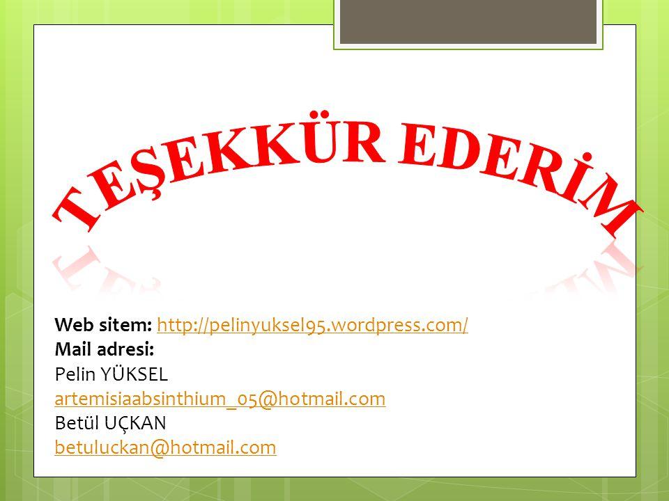 Web sitem: http://pelinyuksel95.wordpress.com/http://pelinyuksel95.wordpress.com/ Mail adresi: Pelin YÜKSEL artemisiaabsinthium_05@hotmail.com Betül U