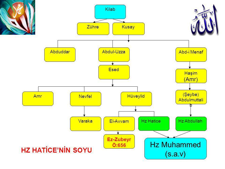 Kusay Abd-i Menaf Haşim (Amr) (Şeybe) Abdulmuttali b Hz Abdullah Hz Muhammed (s.a.v) Zühre Kilab Abdul-UzzaAbduddar Esed Hüveylid Nevfel El-Avvam Hz H