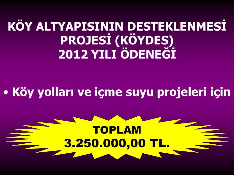 KÖY ALTYAPISININ DESTEKLENMESİ PROJESİ (KÖYDES) 2012 YILI ÖDENEĞİ Köy yolları ve içme suyu projeleri için TOPLAM 3.250.000,00 TL.