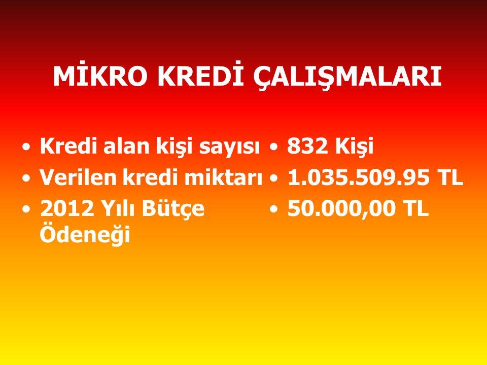 MİKRO KREDİ ÇALIŞMALARI Kredi alan kişi sayısı Verilen kredi miktarı 2012 Yılı Bütçe Ödeneği 832 Kişi 1.035.509.95 TL 50.000,00 TL