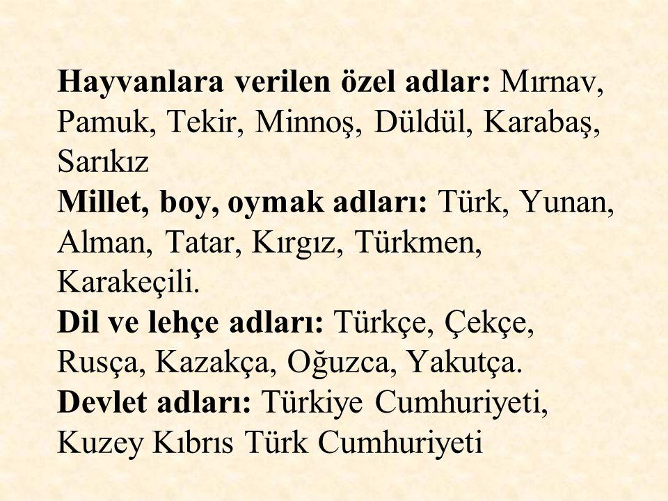 Hayvanlara verilen özel adlar: Mırnav, Pamuk, Tekir, Minnoş, Düldül, Karabaş, Sarıkız Millet, boy, oymak adları: Türk, Yunan, Alman, Tatar, Kırgız, Türkmen, Karakeçili.