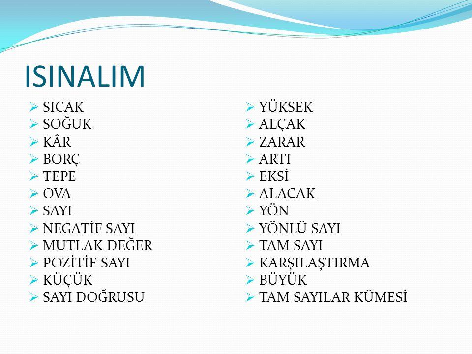 YÖNLÜ SAYILAR Yasemin Dalkılıç, 2 Mayıs 1979'da Ankara'da doğdu.