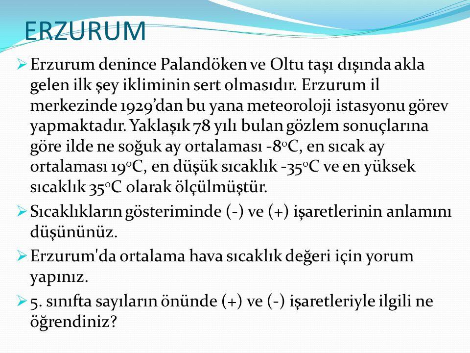 ERZURUM  Erzurum denince Palandöken ve Oltu taşı dışında akla gelen ilk şey ikliminin sert olmasıdır. Erzurum il merkezinde 1929'dan bu yana meteorol