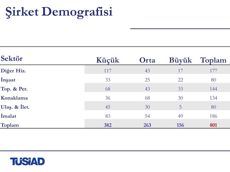 Şirket Demografisi Sektör KüçükOrtaBüyükToplam Diğer Hiz.1174317177 İnşaat33252280 Top.