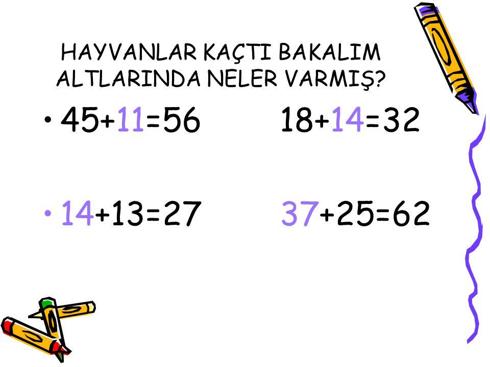 HAYVANLAR KAÇTI BAKALIM ALTLARINDA NELER VARMIŞ? 45+11=56 18+14=32 14+13=27 37+25=62