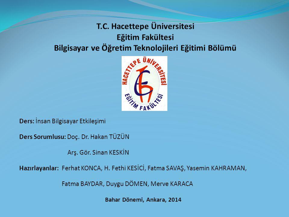 Türkiye deki Gelişmeler (13) TS EN ISO/IEC 9241-151 İnsan Sistem Etkileşiminin Ergonomisi, Bölüm 151: Dünya Geneli Arayüzleri Kılavuzu bilişim sistemleri için kolay kullanılabilir arayüzlerin geliştirilmesine rehberlik eden bir standart belgesidir.