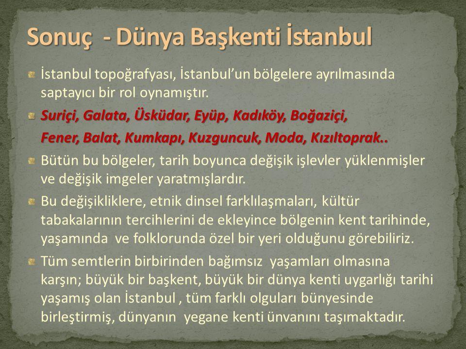 İstanbul topoğrafyası, İstanbul'un bölgelere ayrılmasında saptayıcı bir rol oynamıştır. Suriçi, Galata, Üsküdar, Eyüp, Kadıköy, Boğaziçi, Fener, Balat