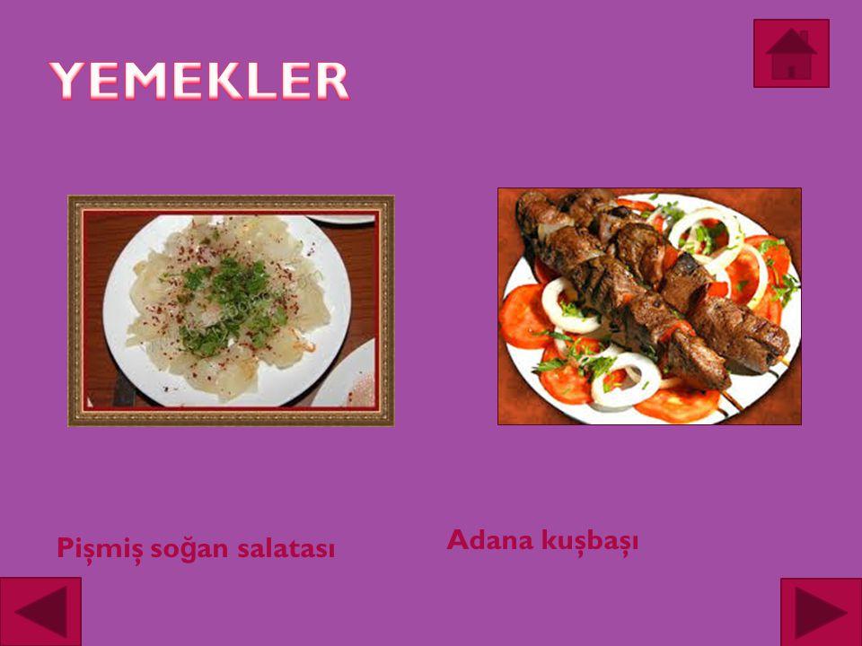 Adana kuşbaşı Pişmiş so ğ an salatası
