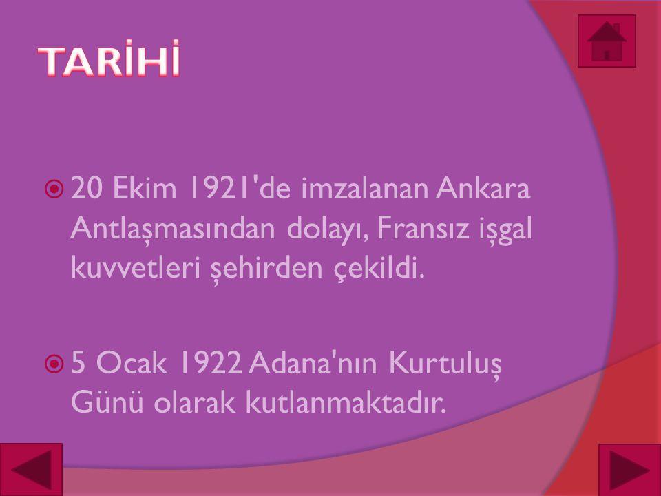  20 Ekim 1921 de imzalanan Ankara Antlaşmasından dolayı, Fransız işgal kuvvetleri şehirden çekildi.