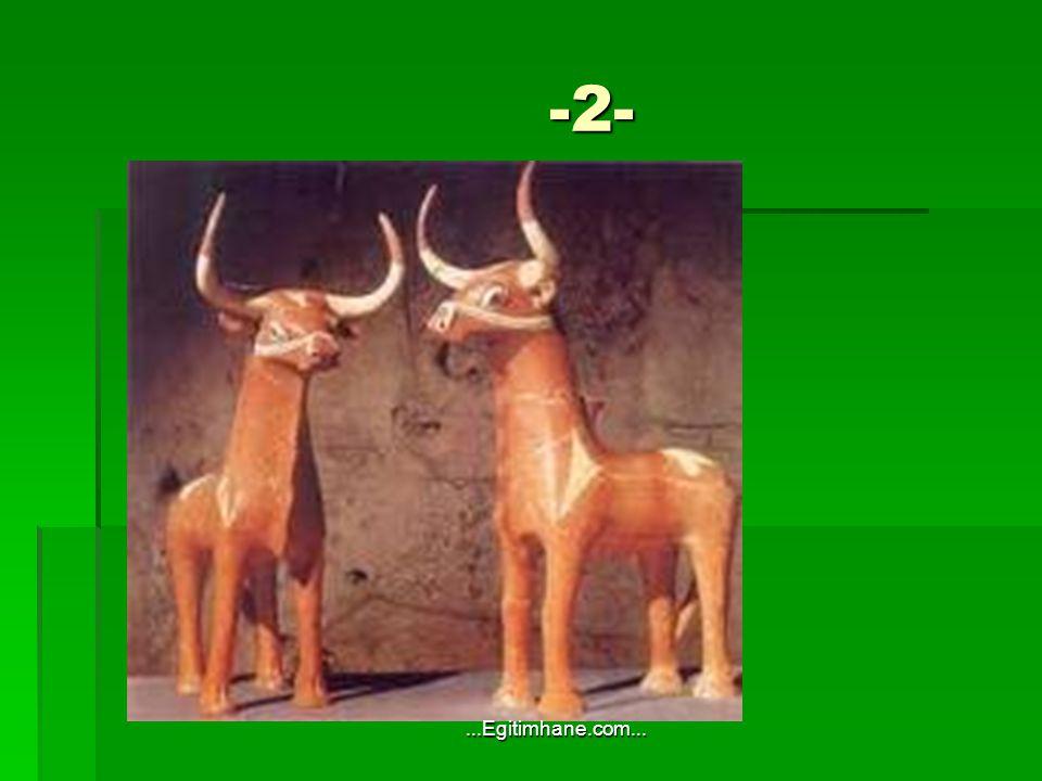 -2- -2-...Egitimhane.com...