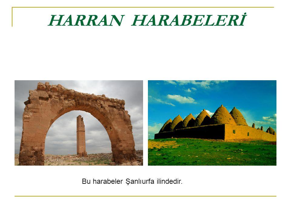 Harran ın en çok ilgi çeken yanı külah biçimindeki kemik kubbeli tipik evleridir.