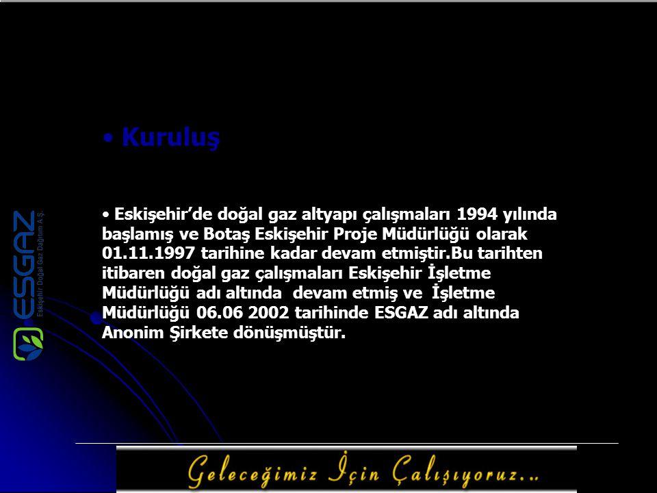 Kuruluş Eskişehir'de doğal gaz altyapı çalışmaları 1994 yılında başlamış ve Botaş Eskişehir Proje Müdürlüğü olarak 01.11.1997 tarihine kadar devam etm