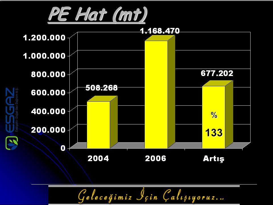 PE Hat (mt) %133