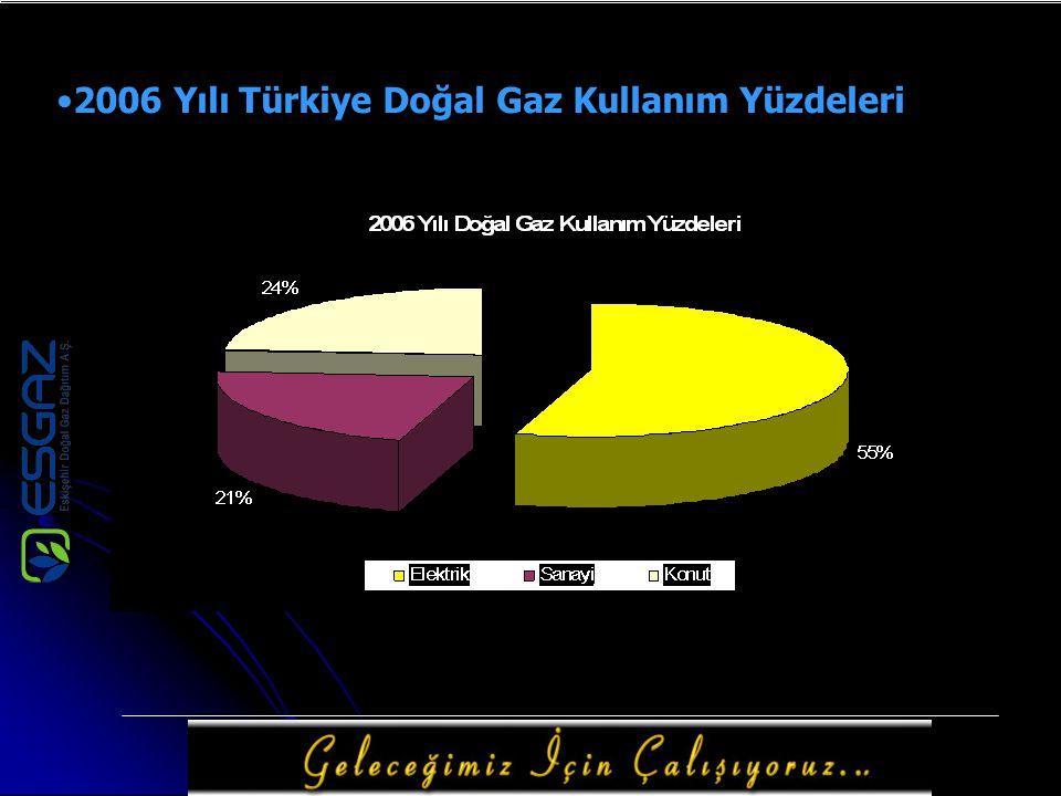 2006 Yılı Türkiye Doğal Gaz Kullanım Yüzdeleri