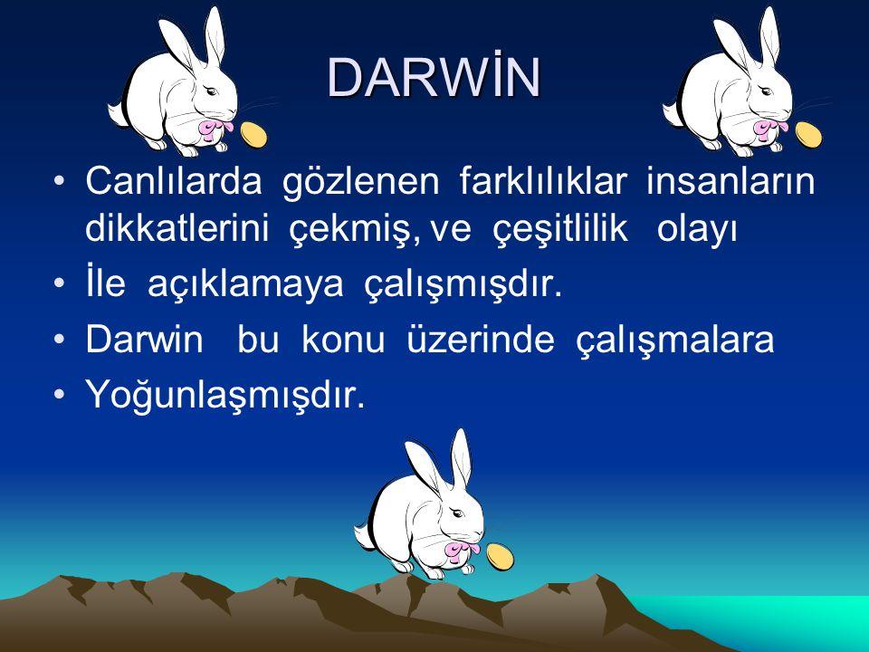 DARWİN Canlılarda gözlenen farklılıklar insanların dikkatlerini çekmiş, ve çeşitlilik olayı İle açıklamaya çalışmışdır. Darwin bu konu üzerinde çalışm