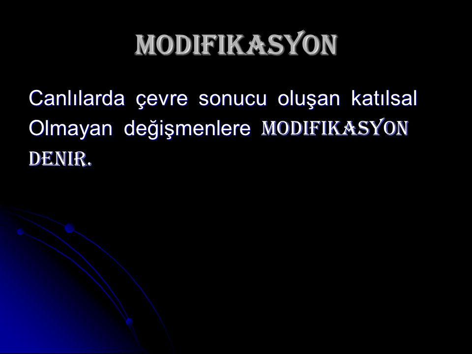 modifikasyon Canlılarda çevre sonucu oluşan katılsal Olmayan değişmenlere modifikasyon Denir.