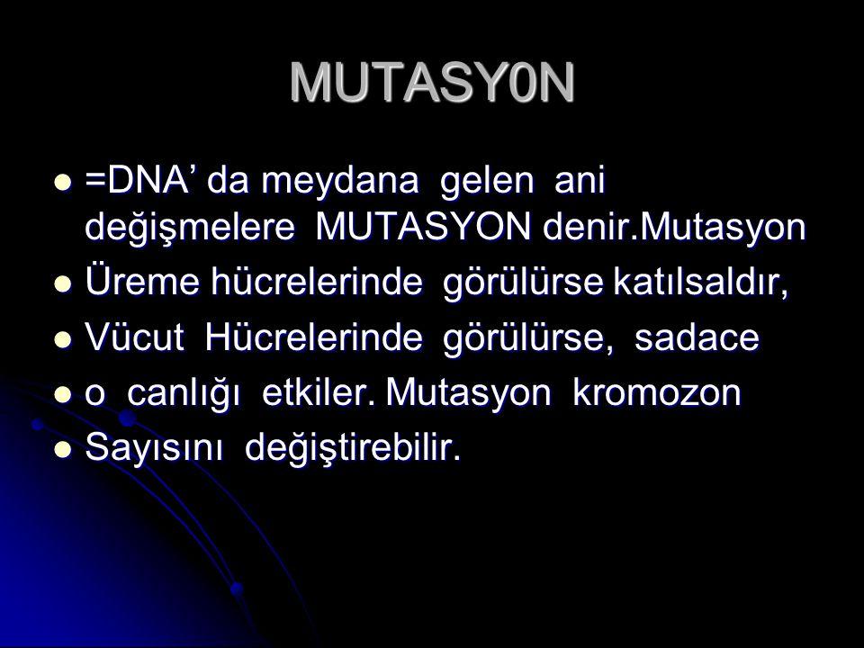 MUTASY0N =DNA' da meydana gelen ani değişmelere MUTASYON denir.Mutasyon =DNA' da meydana gelen ani değişmelere MUTASYON denir.Mutasyon Üreme hücreleri