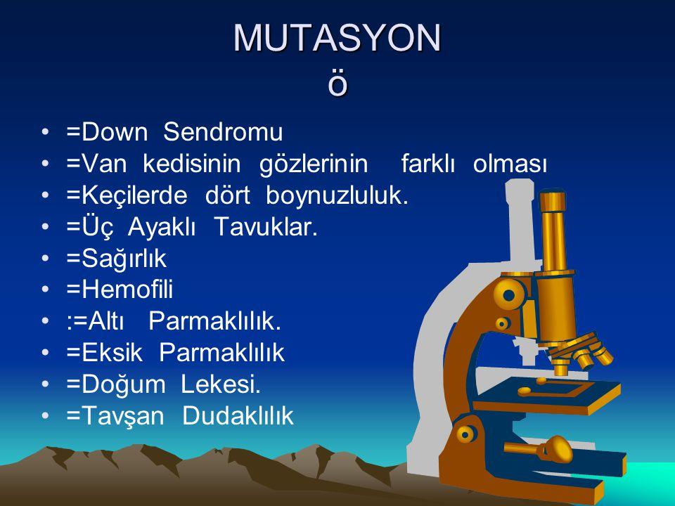 MUTASYON ö =Down Sendromu =Van kedisinin gözlerinin farklı olması =Keçilerde dört boynuzluluk. =Üç Ayaklı Tavuklar. =Sağırlık =Hemofili :=Altı Parmakl